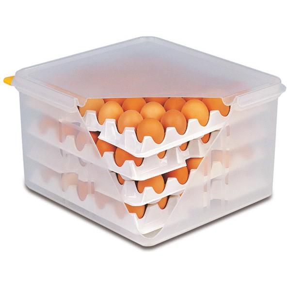 10 Lagen zu Eier-Box
